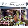 Florarii